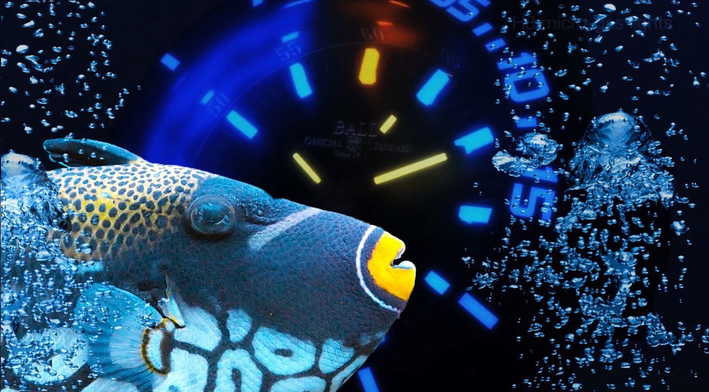 Introducing The Awesome Replica Ball Engineer Hydrocarbon DeepQuest 3000M Diver Watch